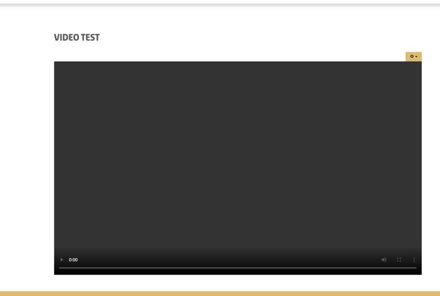 Screenshot2021-01-01at17.13.37.png
