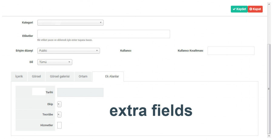 Extra-Fields_2020-06-11.jpg